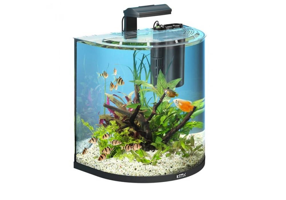 tetra aquaart explorer line aquarium set 60l. Black Bedroom Furniture Sets. Home Design Ideas
