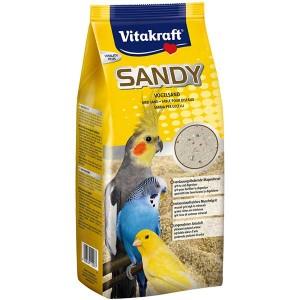 Sandy Vogelsand