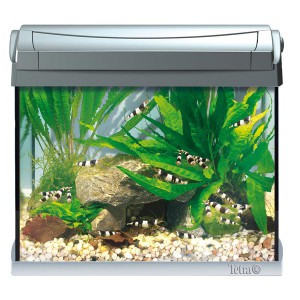 AquaArt Aquarium-Komplett-Set LED 20 L